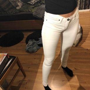 Nyskick dr denim jeans skinny low waist!