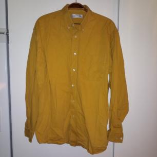 Jättfin, rejäl, gul skjorta