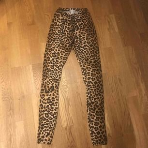 Nya tights leopard  Köparen står för frakt