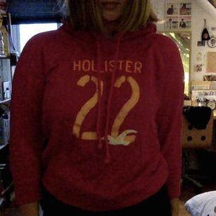 hollister hoodie, rosa.