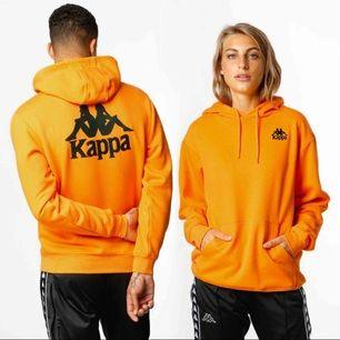 En jätte fin kappa hoodie, i bra skick!