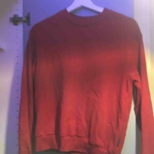 Vanlig röd sweatshirt från cheapmonday