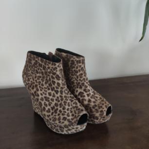 Leopardklackar