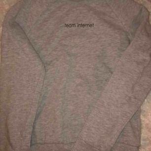 """En grå sweatshirt med texten """"team internet"""" på. Säljs pga ingen användning."""