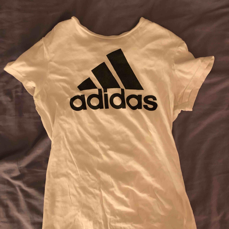 Adidas T-shirt . T-shirts.