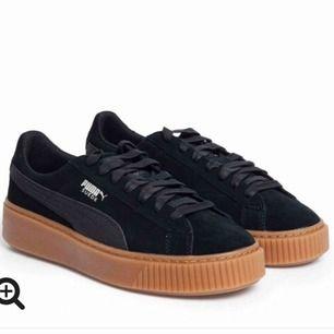 Svarta mocka skor från puma Köpta för ett år sedan men ser ut som nya utanpå! Lite trasiga i fodret, därav det låga priset! Nypris: 1000kr