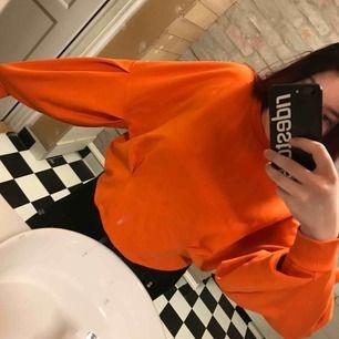 Supercool orange sweatshirt i toppen skick. Den är i storlek XS men sitter lite oversized på mig som är en S-M, så kan användas på dig mellan XS-L beroende på hur just du vill att den ska sitta!☺️