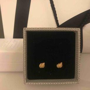 Helt nya Anni lu örhängen i guld köpta på wakakuu, snäckor, nypris 799kr
