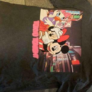 Skit snygg t-shirt från Zara, jätte fint skick!!!