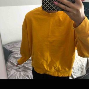 Weekday tröja i storlek S men passar också M. Aldrig använd och säljs för priset:99kr🥰