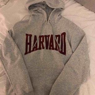 Snygg hoodie med tryck, från hm Aldrig använd Mitt pris: 150 kr ink frakt!