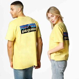 T-shirt från Patagonia i storlek s (man). Köpt i new York använd ca 2 ggr.  Köparen står för frakt 💕