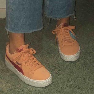Held nya skor från puma som aldrig är använda🤍🧡  Storlek 37. Köparen står för frakten så 450kr+50kr(frakt)=500kr.