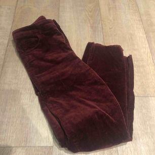 Vinröda manchester-byxor som sitter så snyggt! Tight över låren men raka efter knäna.