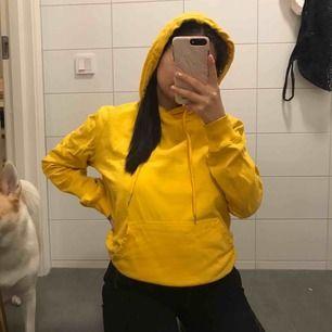 jättefin gul hoodie med ficka! helt ok skick, från lager 157.