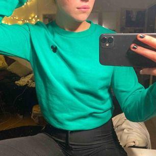 Grön tröja med mussepigg märke!