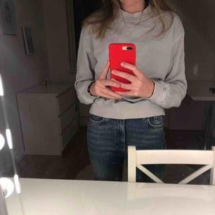 Blå/grå Sweatshirt