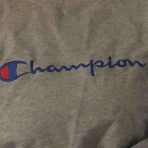 As cool Champion tröja Frakt står köparen för
