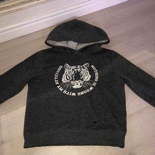 snygg hoodie från Gina Tricot, använt skick. det är typ nagellim längst mera på tröjan så det är en mörkare fläck