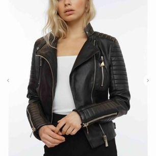 Moto jacket chiquelle