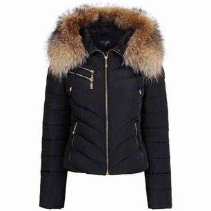Använd en vinter. Svart hollies jacka med stor päls strl 34.