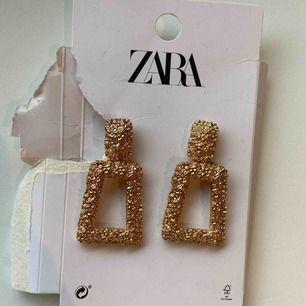Guldiga öronhängen från Zara 🤩 Aldrig använda. Frakt kan tillkomma beroende på vart du bor 😁