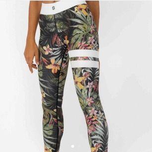 SÖKER!! Dessa stronger tights i storlek xs hör gärna av er om ni har ett par och vill sälja för 200-300kr?❤️😘