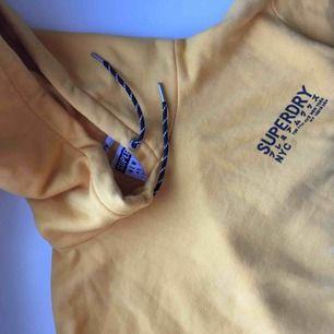 Gul (andra bilden är accurate) hoodie från Superdry. Toppskick! Köpt i höstas. Frakt: 40kr.