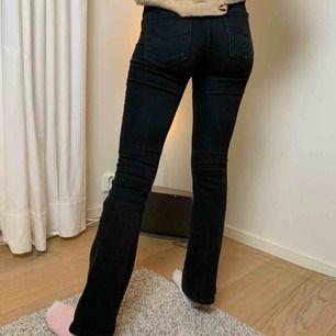 Svarta bootcut jeans från Crocker. Kostade från början 800 kr!
