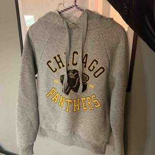 Säljer denna gråa hoodie!! Säljer pågrund av att den tyvärr inte kommer till användning längre och är lite för kort för mig i armarna💕