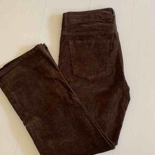Allsaints byxor, i velvet brun kick flare model. Nypris 1400kr. Super stretchiga och sköna!