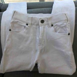 Perfekta vita jeansen som hållits fläckfria. Fint skick och köpta från drdenim💛 Används Max 2 ggr