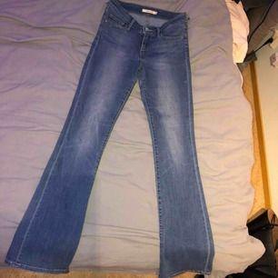 Levis bootcut jeans. Sälgs pga växt ur dom. Byxorna är slitna i skärphållaren därför kan priset diskuteras!