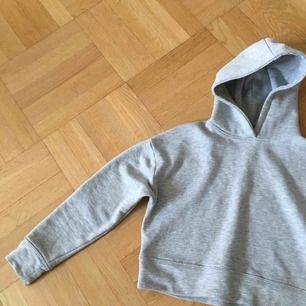 En knappt använd hoodie ifrån zara kostade 200 som  inte hål eller sliten skriv om du vill ha mer bilder💗