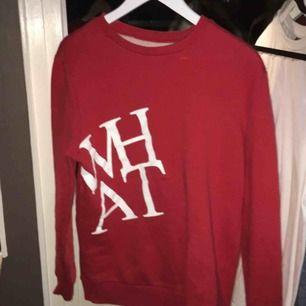Röd tröja med ett WHAT tryck