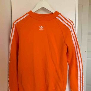 Supersnygg Adidas tröja i en härlig orangefärg! Köpt ifrån Junkyard men säljes på grund av att jag aldrig använder den:( så hoppas det finns någon annan som kommer använda den🥰 frakten kostar ungefär 50kr🦋