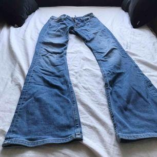 Crocker bootcut jeans
