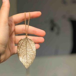 Ett fint, tunt löv i guld med en tunn guldkedja.