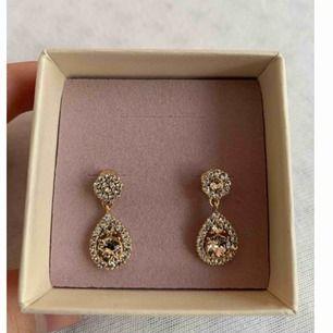 Petite Sofia earrings från Lily & Rose i färgen Light silk. Helt nya och aldrig använda, köpta för 349 men säljer för 220 inkl frakt #rose #lilyandrose #örhängen