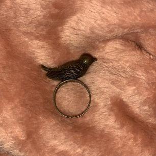 En fågel ring med justerbar storlek!