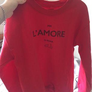 Mysig tröja köpt i Italien, kommer inte ihåg storlek men är som s eller liten m. Frakt 63kr