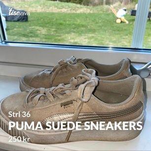 Snygga och bekväma sneakers från Puma i storlek 36. Väl använda men inget som syns tydligt förutom på sulorna. (Färgen syns lite tydligare på bild 2). Säljs pga för stora för mig. Frakt tillkommer (köparen står för frakten)☺️