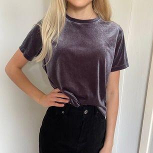 T-shirt i sammetstyg från Zara fint skick och knappt använd!