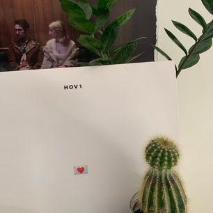 Skiva till hov1s första album kärleksbrev, köpt i Stockholm, köade i 6 h och skivan är signerad av alla medlemmar kontakta för fler bilder. Kan mötas upp i Uppsala annars står köpare för frakt. Inga skador