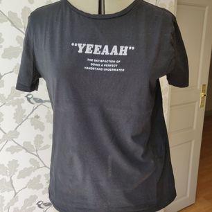T-shirt med tryck från Zara, väldigt bra skick, storlek S. 50kr +frakt